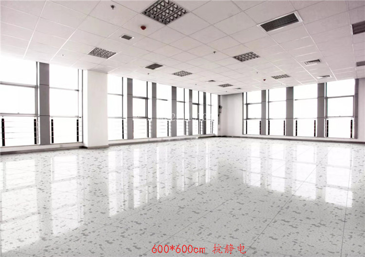 Electronic equipment computer room environmental protection wear resistant plastic PVC floor sanatorium business office clubhouse ground glue