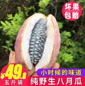 贵州野生八月瓜包邮水果新鲜5斤