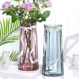 创意花瓶玻璃透明水养客厅摆件鲜花插花瓶北欧简约富贵竹干花花瓶图片