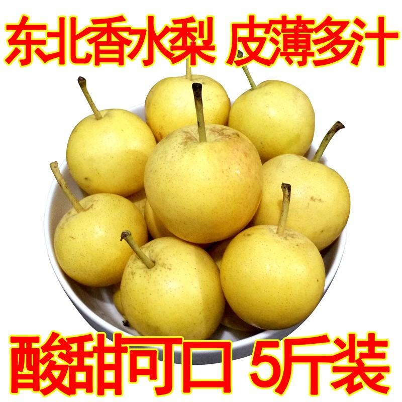 东北特产水果小香水梨延边新鲜辽宁鞍山多汁酸甜软梨农产品美食