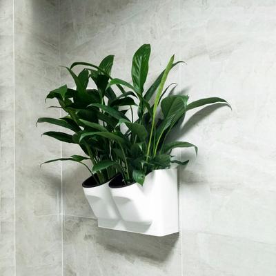 懒人自吸水墙壁挂式绿萝箩吊兰水培树脂塑料花盆创意可储水家用