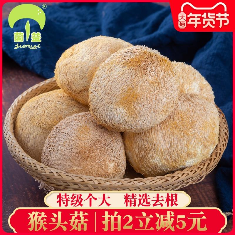 菌益 猴头菇干货250g 古田特产猴头菇养胃(非东北产)