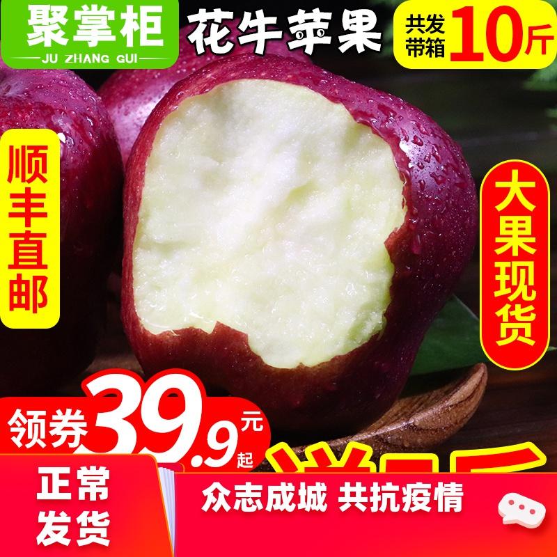 【买1送1】甘肃天水花牛苹果当季蛇果