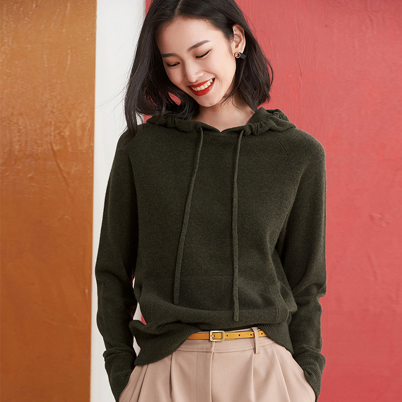 Hooded sweater womens autumn and winter wear new thickened Hooded Sweater Korean version