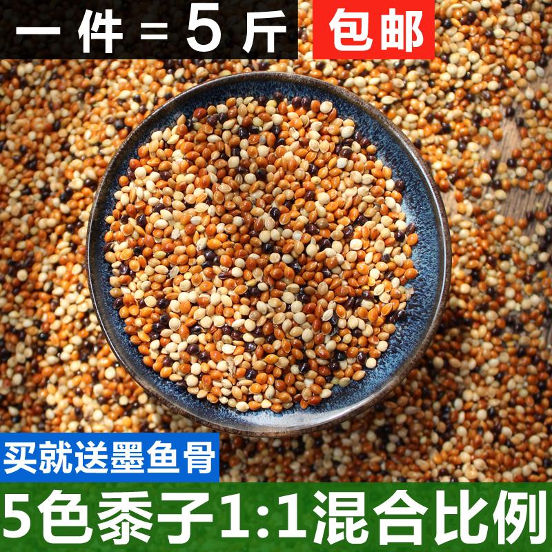 虎皮 牡丹 玄凤 小太阳鹦鹉五色红黍子混合鸟食鸟粮-鹦鹉饲料(励冠家居专营店仅售12.14元)