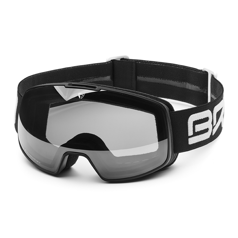 Briko ski glasses nyira free filter FIS 7.6