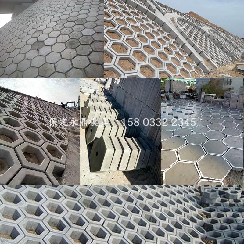 中国护坡六棱块模板六方块六角块护坡砖塑料磨具模型水泥制品塑料