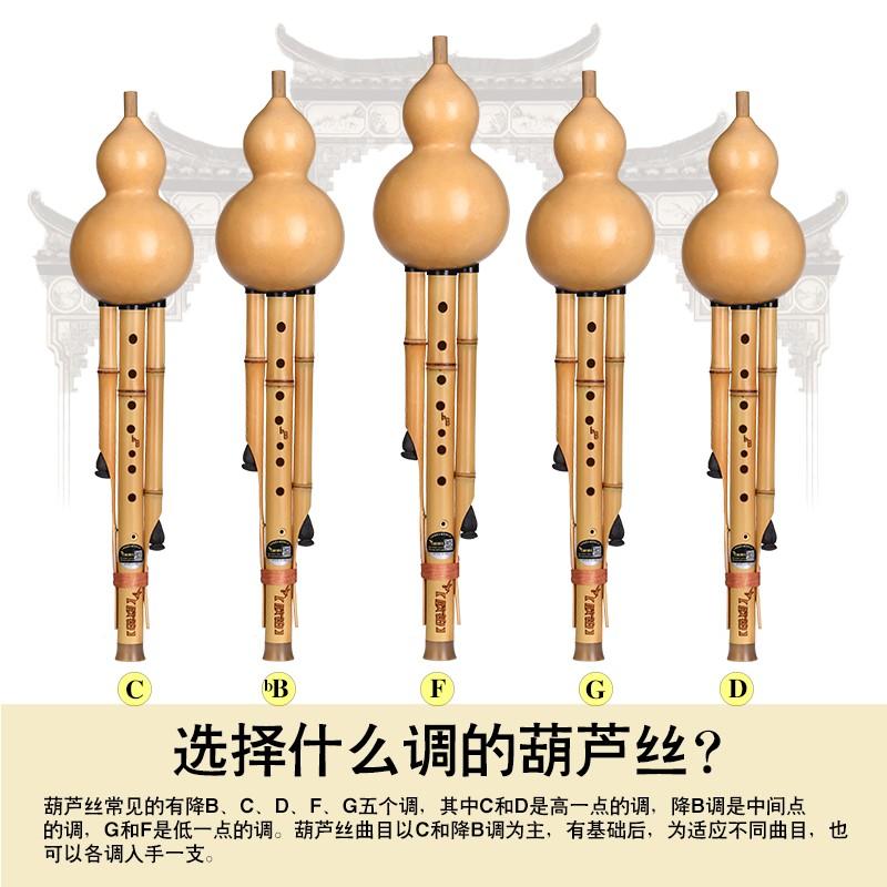 金竹九孔葫芦丝乐器初学调降调调调专业演奏型乐器云南