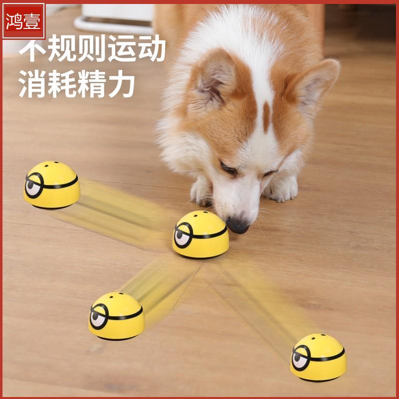 狗狗玩具猫解闷逗狗神器小狗耐咬磨牙电动发声小型犬柯基宠物用品