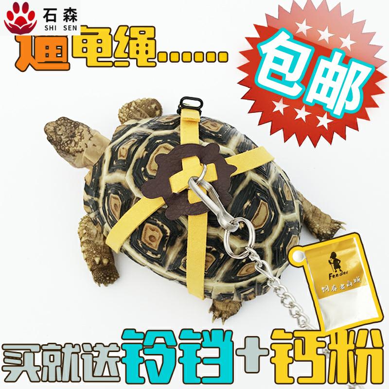包邮遛龟绳溜龟绳陆龟牵引绳乌龟绳宠物牵引背带外出飞翼绳奔跑吧
