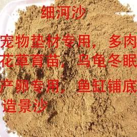 沙子河沙散装建筑用沙沙袋砂石鱼池造景细沙冬眠沙多肉沙土干沙子