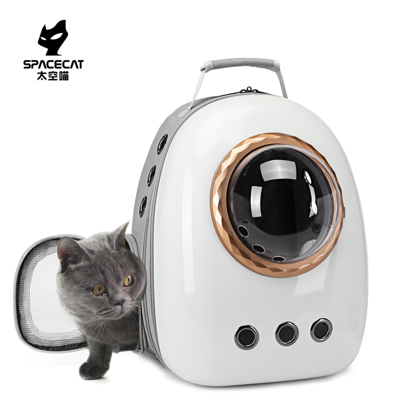 Cat bag in space, cat bag out, cat bag out, dog in portable cabin, cat bag on both shoulders, pet
