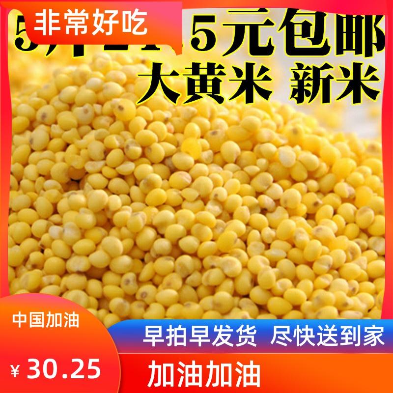大黄米农家新米黏粘黄米黍米糜子5斤山西东北粘豆包粽子的糯小米