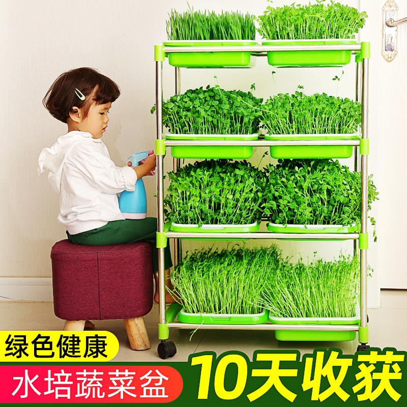 阳台种菜设备