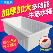 牛筋料塑料方箱塑胶方桶养鱼虾水产养殖箱PE水箱长方形推布车内胆