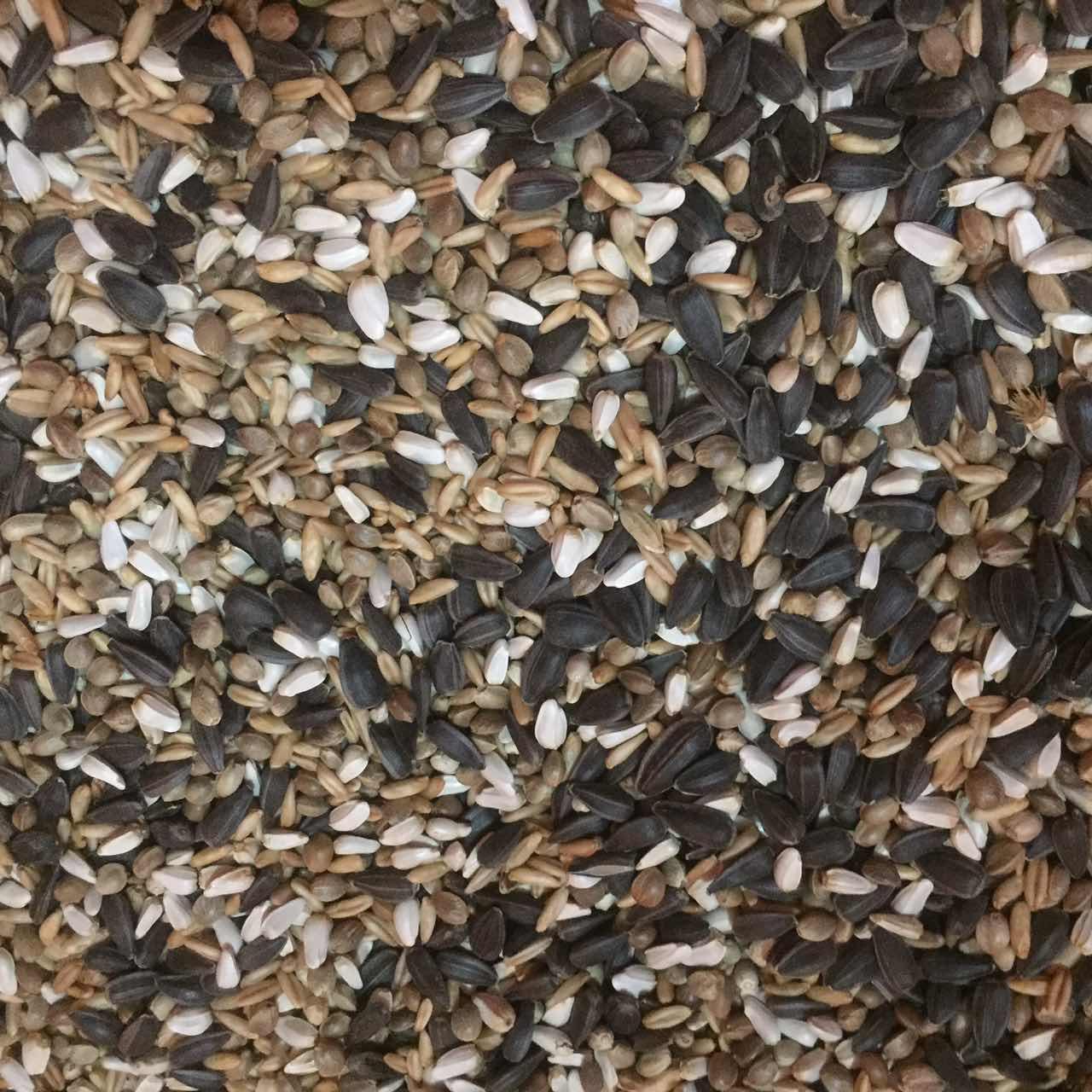 小型の太陽のオウムのハイブリッドの食糧の5斤の全国は真空を郵送して酸素除去剤の鳥を連れてえさを食べて支えます。