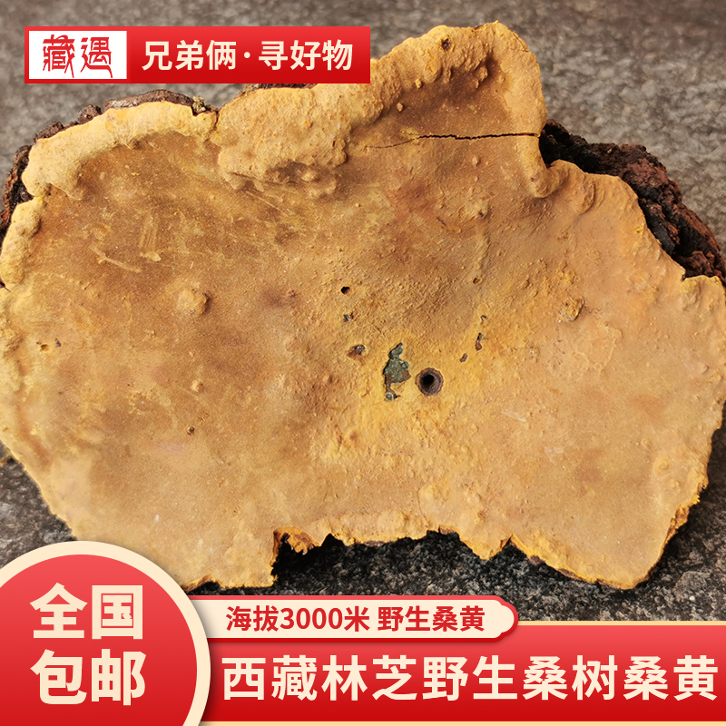 Tibet brothers Linzhi real store 2020 wild mulberry mulberry golden edge mulberry dried goods 50g