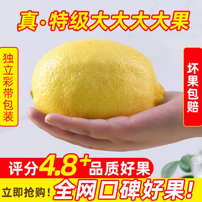 柠之缘安岳柠檬特级大果应季新鲜水果皮薄多汁当季现摘黄柠檬鲜果