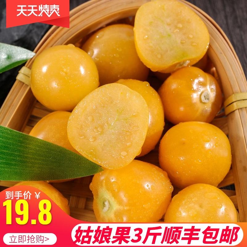 姑娘果东北新鲜水果 菇娘果甜灯笼果黄菇凉果当应季整箱顺丰包邮