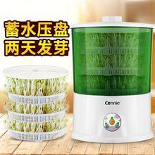豆芽机家用全自动大容量多功能智能生绿豆芽机盆豆芽菜发芽机 新款