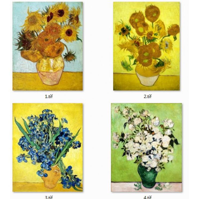 噴繪畫芯世界名畫自粘式歐式客廳裝飾壁畫向日葵梵高白色玫瑰花