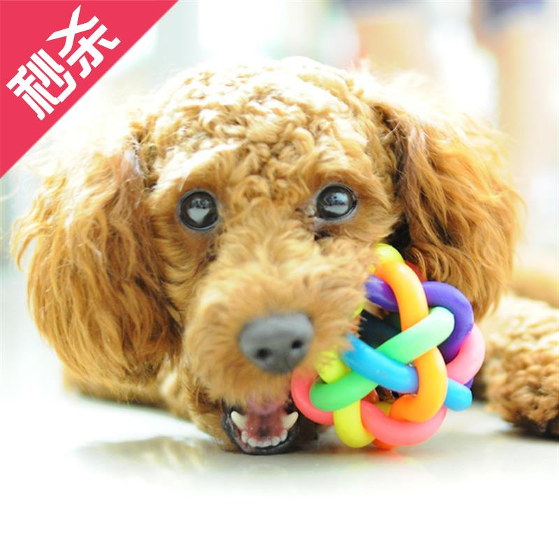 Toys special price colorful bell ball pet rubber ball small bell bear e bite ball cat dog ball