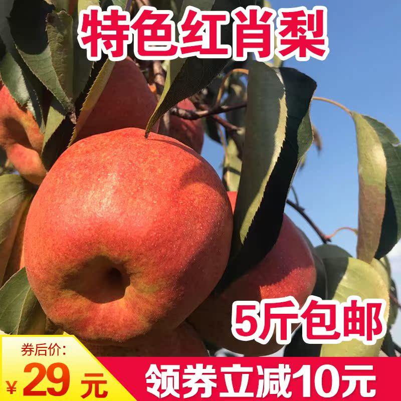 红肖梨北京大果正宗辽宁盖州红肖梨9斤辽宁水果特产河北红梨包邮