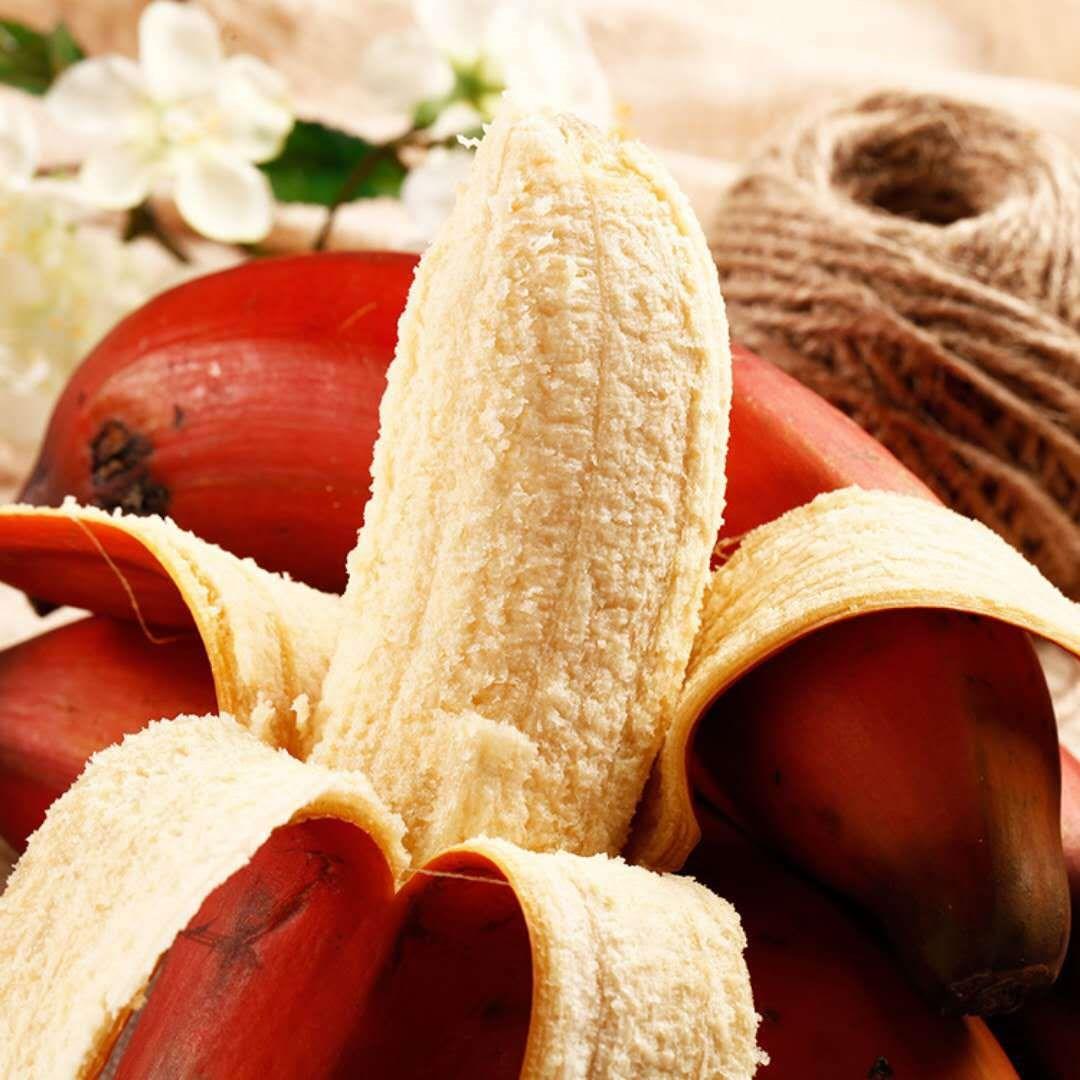 福建漳州红美人香蕉5斤非米蕉新鲜当季水果红皮小米蕉芭蕉箱包邮