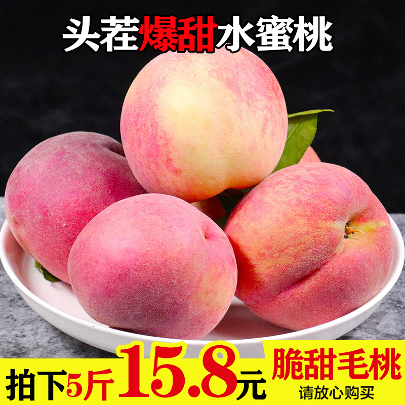 新鲜水蜜桃当季整箱10 5斤包邮毛桃