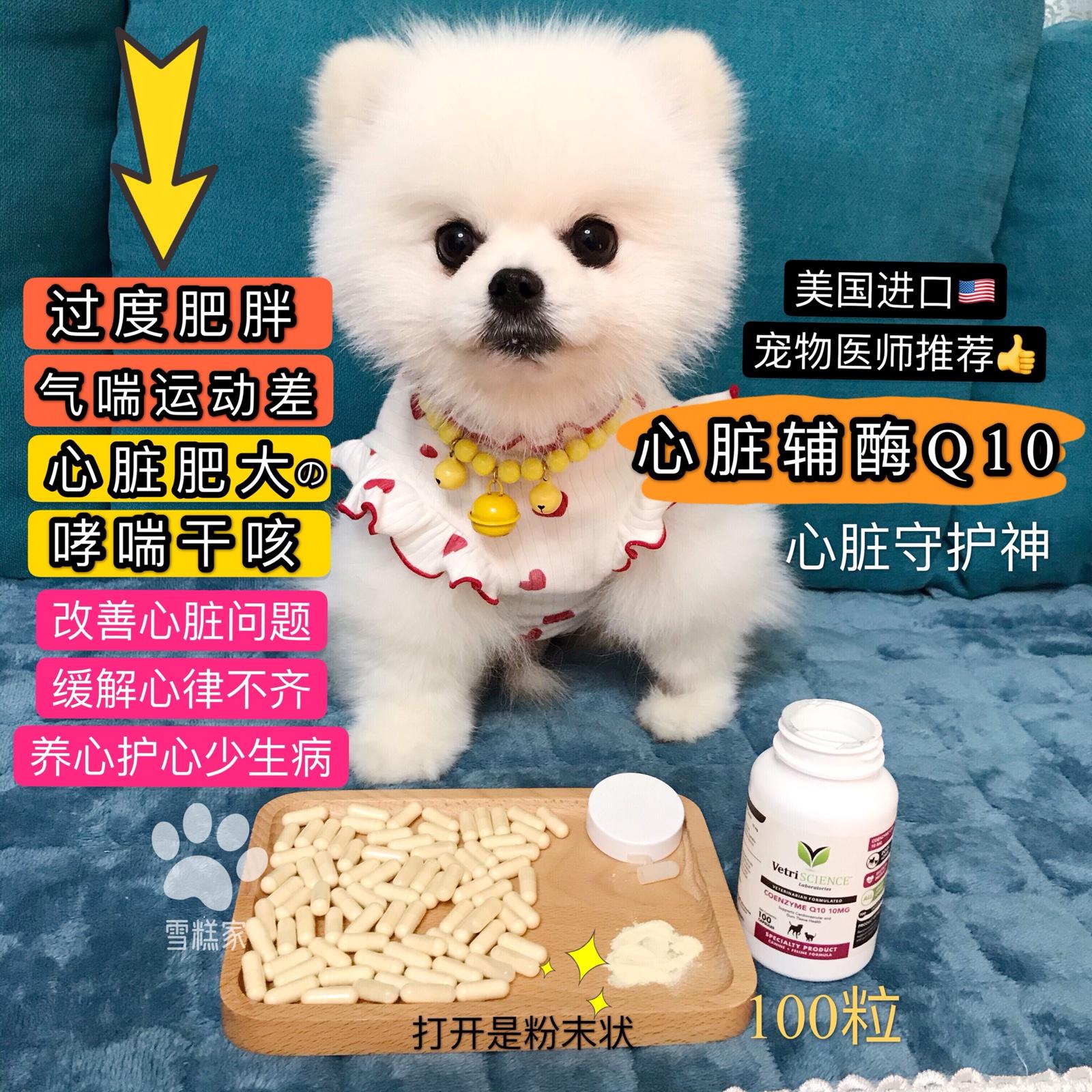 mini同款心脏病宠物辅酶q10心脏保健品q10狗猫通用美国益心康