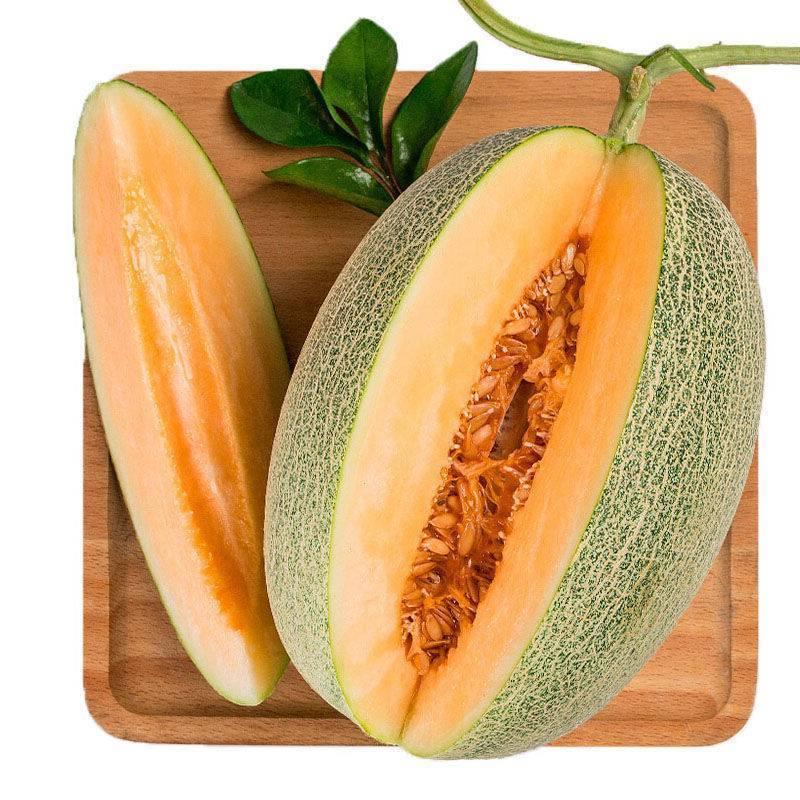 爆甜 海南当季现摘水果脆甜香瓜甜瓜网纹瓜西州蜜多汁哈密瓜