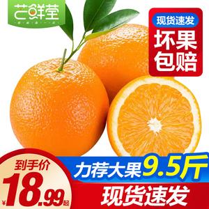 【江西贛南臍橙】橙子新鮮大果手剝冰糖甜橙果凍橙子當季整箱