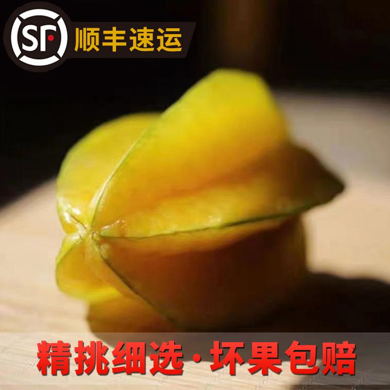 云霄下河杨桃5斤 现摘当季时令洋桃孕妇新鲜水果红龙阳桃大果包邮