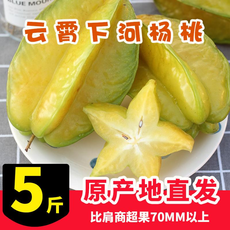 【农仁爱】福建下河杨桃5斤水果包邮洋桃新鲜助农现摘当季星星果