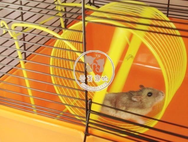 仓鼠西施熊金丝熊,金花松鼠笼子整理箱用铁跑轮转轮滚轮跑步机