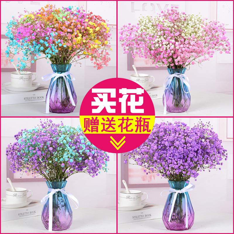 【含花瓶】满天星天然干花花束送人鲜花真花客厅装饰摆设小花束