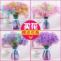 查看【含花瓶】满天星天然干花花束送人鲜花真花客厅装饰摆设小花束价格