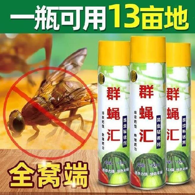 气味诱捕器果实粘蝇板温室瓜果夜蛾