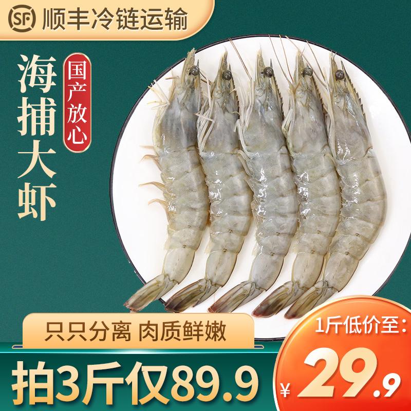 新鲜大虾鲜活海鲜水产白虾类海捕虾