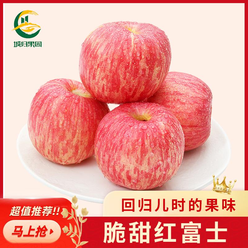 【城归】红富士苹果10斤水果新鲜当季整箱应季脆甜冰糖心丑苹果
