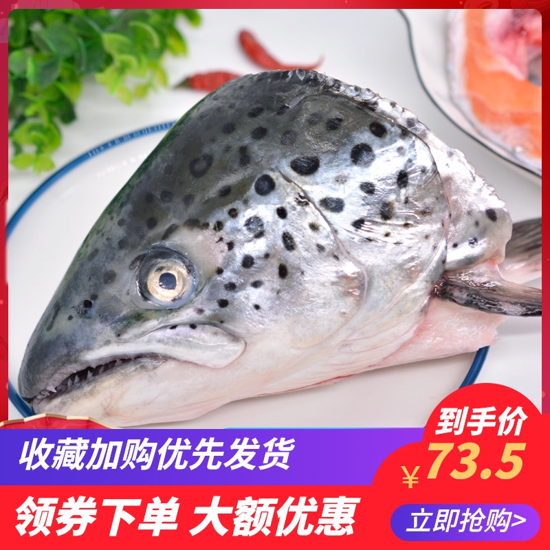 三文鱼头鱼头新鲜包邮超大法罗群岛海鲜水产鲜活烧烤炖汤食材鱼头