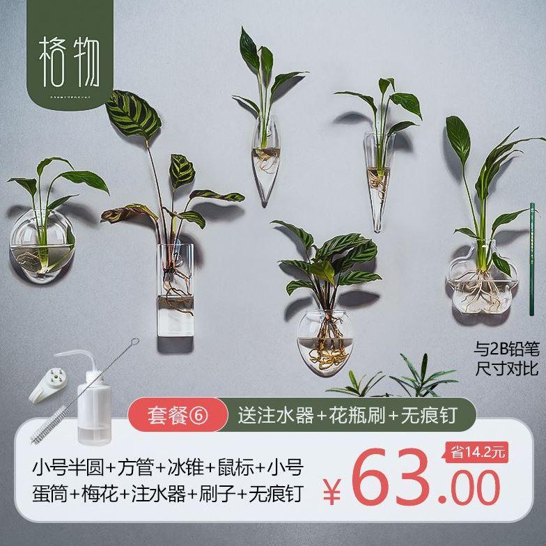 Garden House hyacinth utensil bedroom hydroponic vase coffee shop hanging handicraft plant flower arrangement fish tank