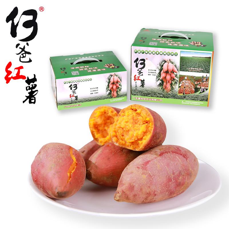湛江地瓜山芋新鲜农家沙地红心蜜薯糖心西瓜红何爸红薯新鲜 10斤