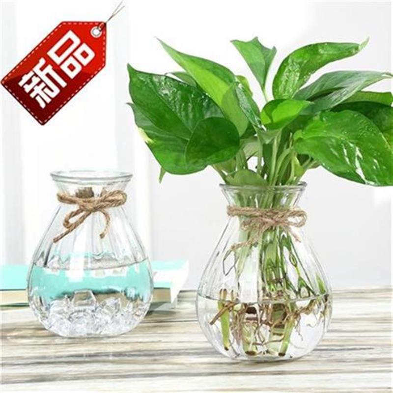 Xinpu set up glass B vase glassware plastic art simple transparent large coffee QT hall personality 16 wine