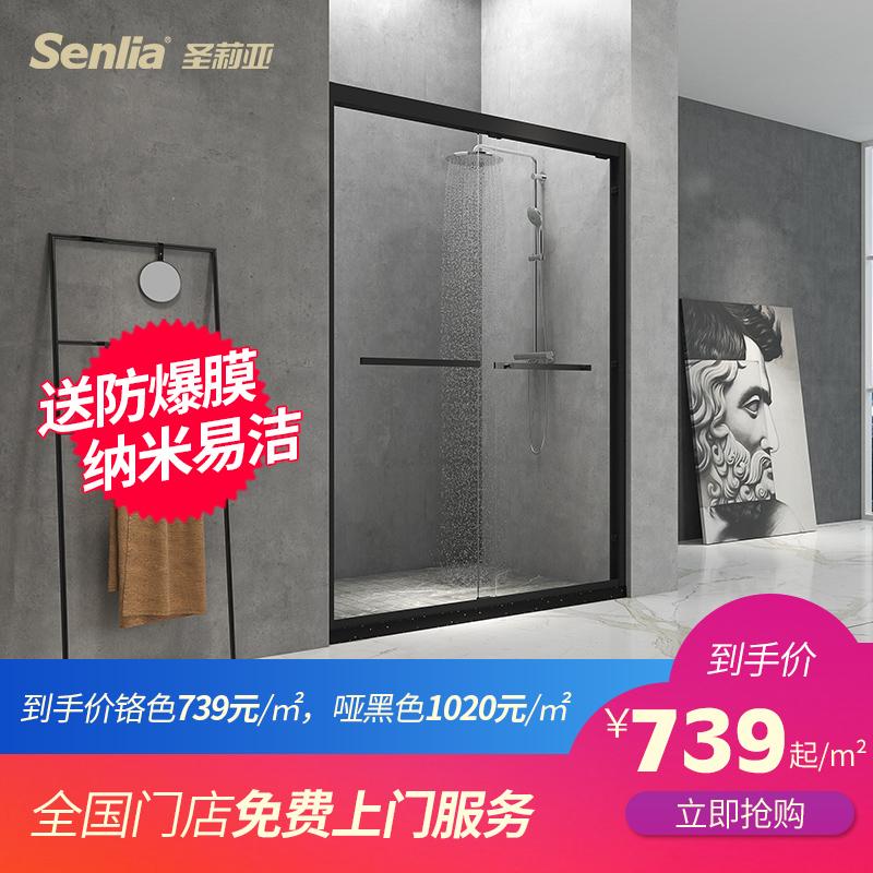 圣莉亚一字形整体淋浴房定制简易型卫生间玻璃隔断浴室不锈钢移门