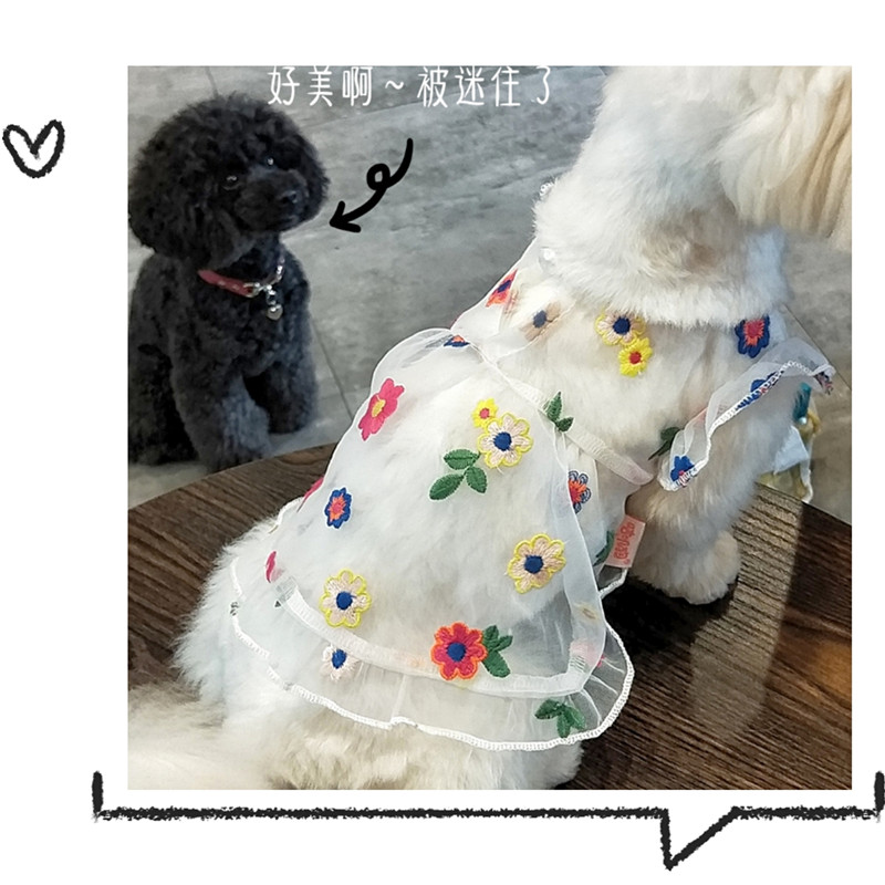 Clothes cat General Pet skirt little dog Bomei summer Princess thin P embroidered teddy bear