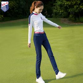 春秋新款ZG6高尔夫球服装女衣服女装秋冬长袖T恤上衣宝兰修身长裤图片