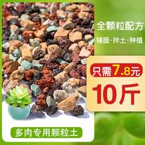 多肉全颗粒土虹彩石植物铺面石种植彩虹石兰花营养土火山岩麦饭石