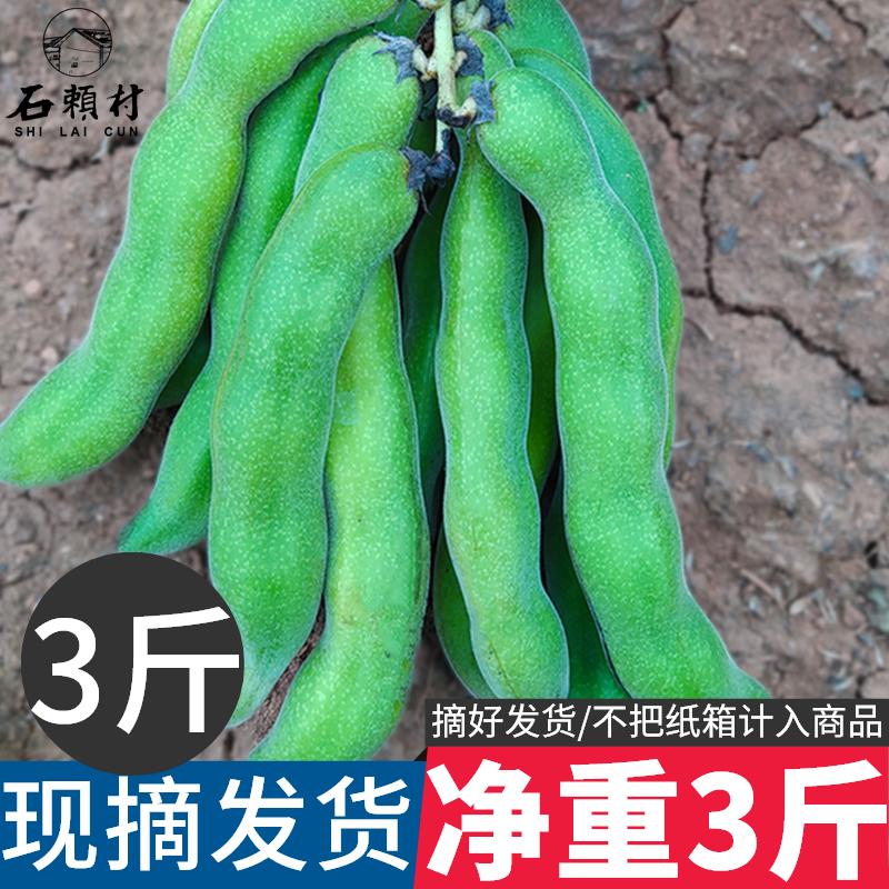 四川狗爪豆3斤农家新鲜狗儿豆猫猫豆现摘龙爪豆特产虎老豆狗毛豆