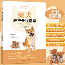 全彩图解版 柴犬养护全程指导 宠物狗喂养实用手册新手入门养狗指南书籍柴犬饲养方法